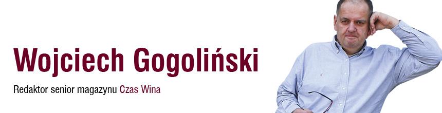 Blog Wojciecha Gogolińskiego