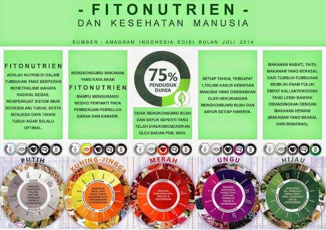 Kandungan Fitonutrien Dalam Warna Sayur Dan Buah