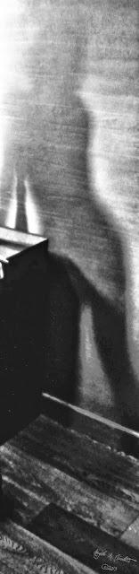 E quando l'ombra disperdendosi più non è, la luce che permane diviene ombra per un'altra luce. Così la libertà vostra, quando smette le catene, diviene essa stessa catena a una più grande libertà. ((Kahlil Gibran, il Profeta)