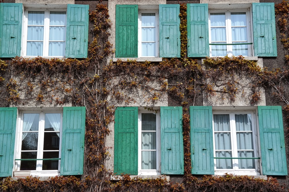 Green shutters on windows