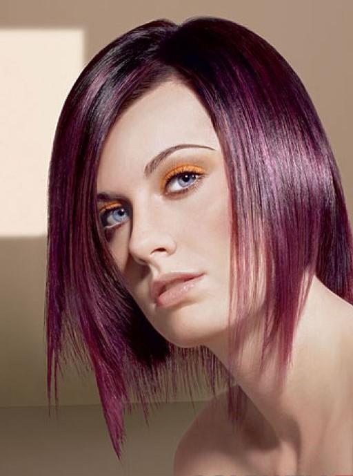 http://1.bp.blogspot.com/-0sWgR2HuZ8M/TcJzHn-aaqI/AAAAAAAAAMU/g5jN_hShOjY/s1600/coloration-cheveux-prune.jpg