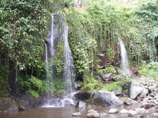 Lembah Salak Camping Ground - Bogor