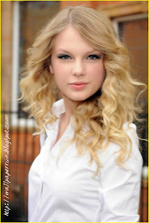 Taylor Swift Skirt