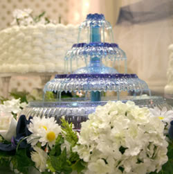 Wedding Decor Supplies