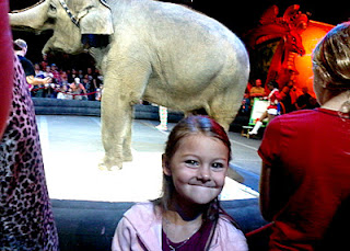 Tessa's first circus! She enjoyed seeing the animals up close during the preshow. This particular pachyderm painted pictures.