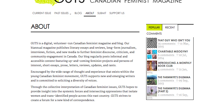 Feminist perspective essay