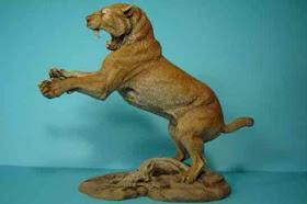 10 Jenis Kucing Prasejarah [ www.BlogApaAja.com ]