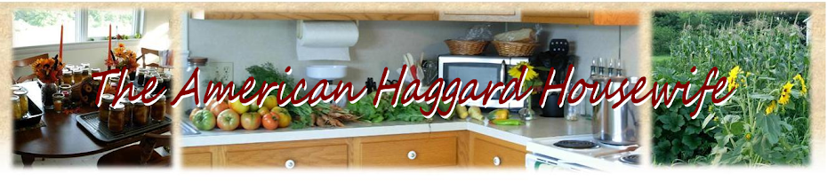The American Haggard Housewife