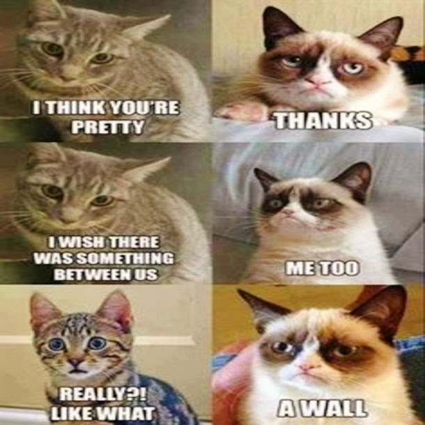 valentine's day memes lord of the rings - JimmyFungus The Best of Grumpy Cat The Best Grumpy