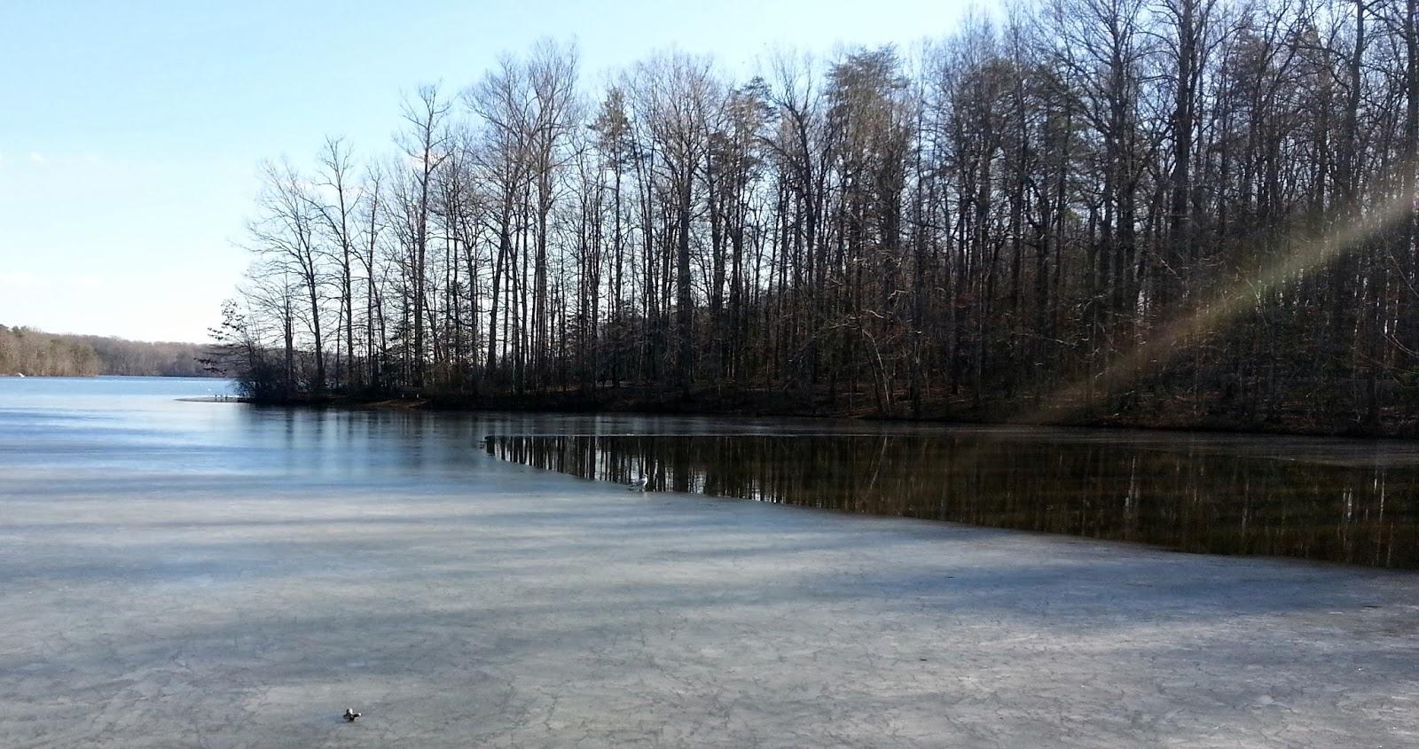 Ben 39 s journal first trail run of the year burke lake for Burke lake fishing