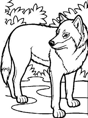 Lobo para colorear y pintar ~ Colorea el dibujos