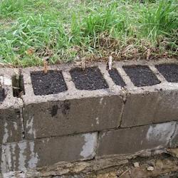 Curved Retaining Wall Blocks Landscape Garden