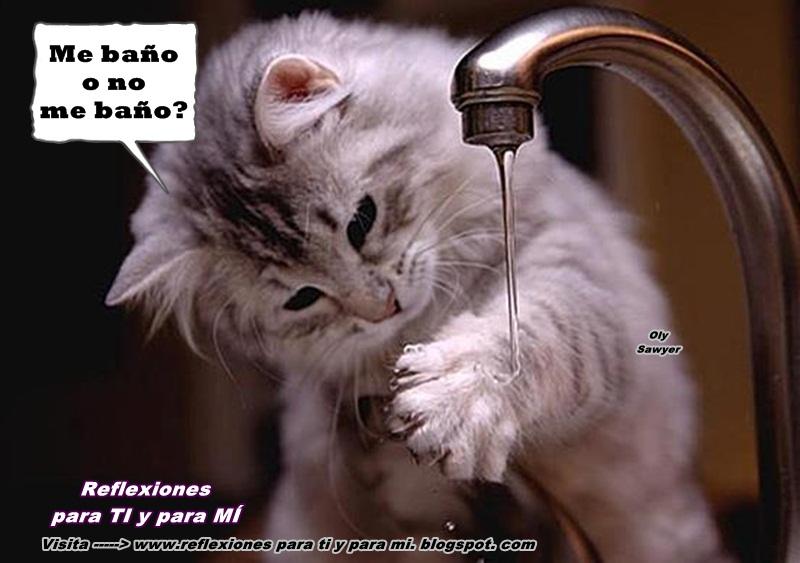 Imagenes De Baño Mujeres:Reflexiones para TI y para MÍ: * Me baño o no me baño?