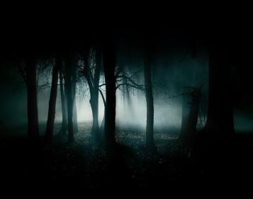 media_floresta-negra-7819b.jpg (357×280)