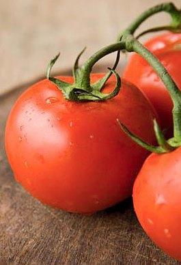 Tomat_membantu_mencegah_kanker