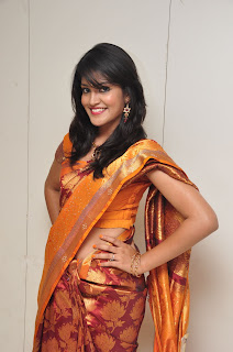 Model krupali in silk saree at cmr ashadam event 009.jpg