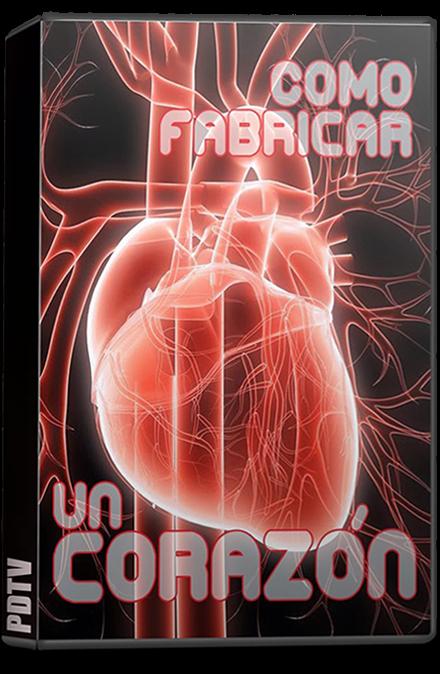 Cómo Construir un Corazón (2010) TvRip [Mega]