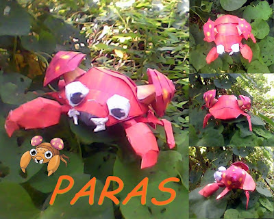 paras+by+turtwigcutey.jpg