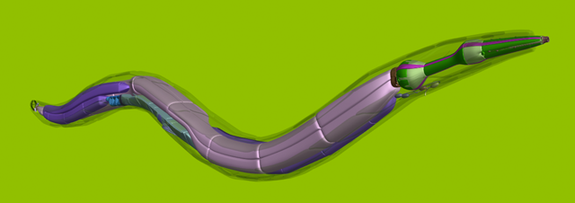 OpenWorm Milestone as Artificial Worm Wriggles to Life