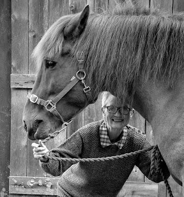 nannasalmi pferdehaarschmuck