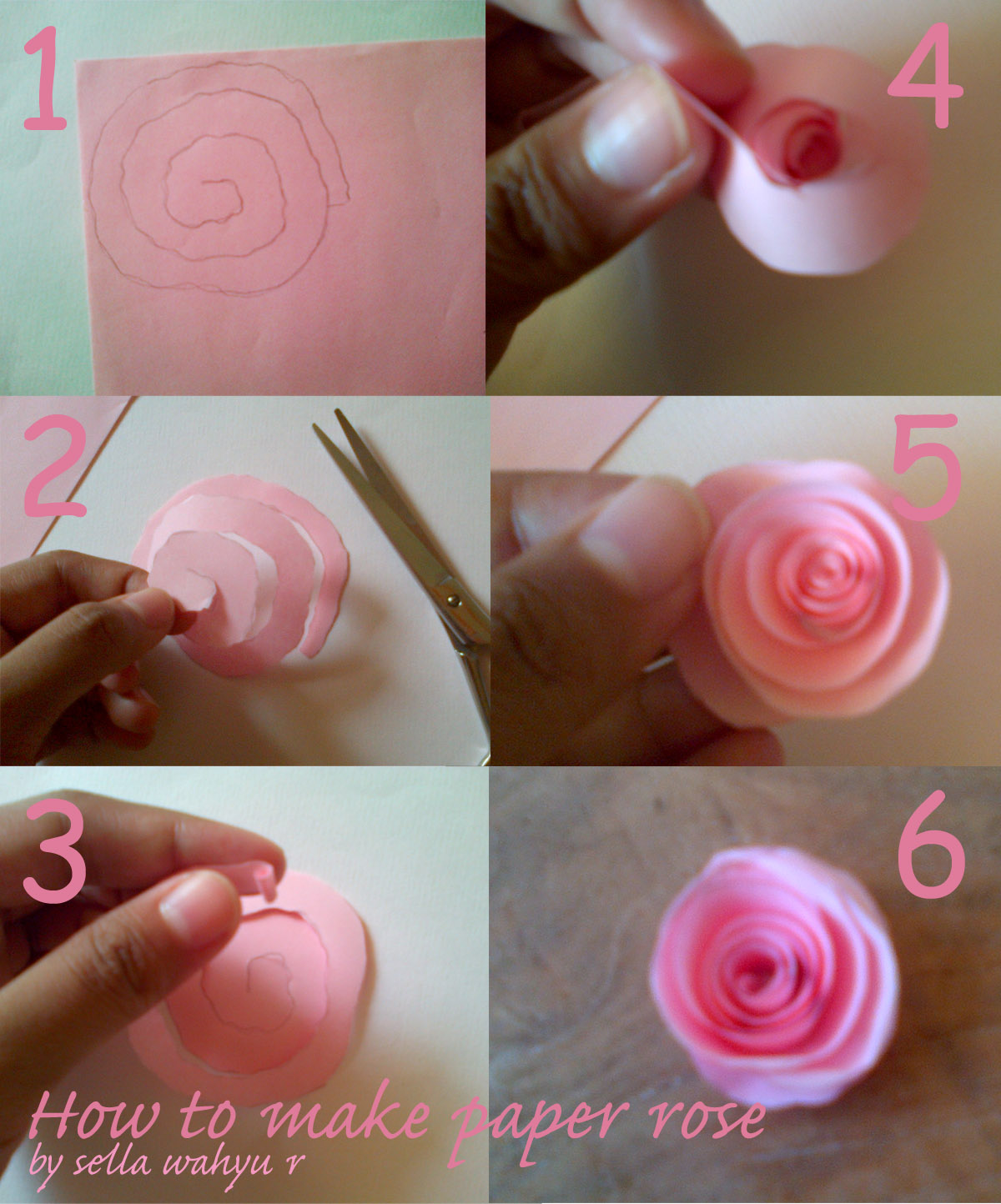 How to make paper quilling rose simple you can continue the step beautiful quilling paper paper rose with how to make paper quilling rose mightylinksfo