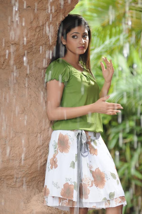 hari priya latest photos