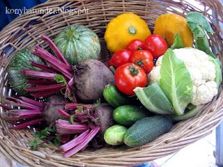McNallys-organic-veg-basket