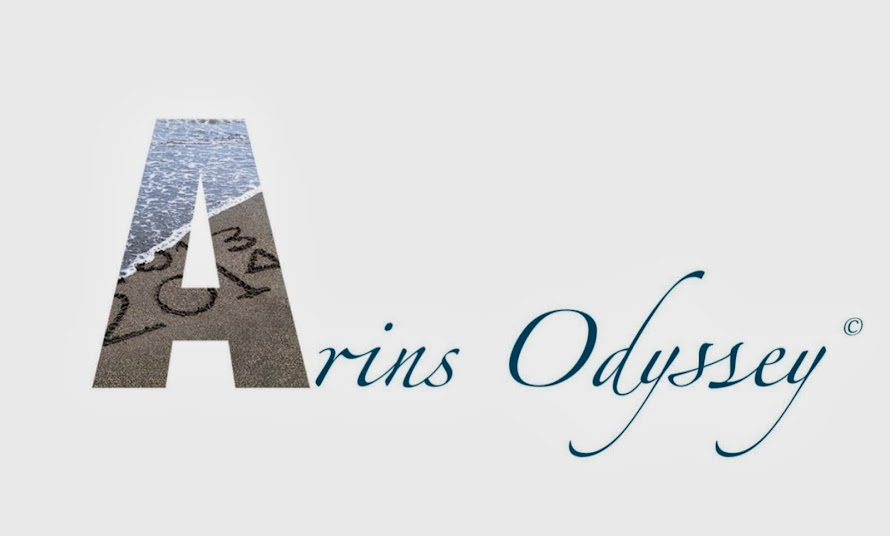 Arin's Odyssey