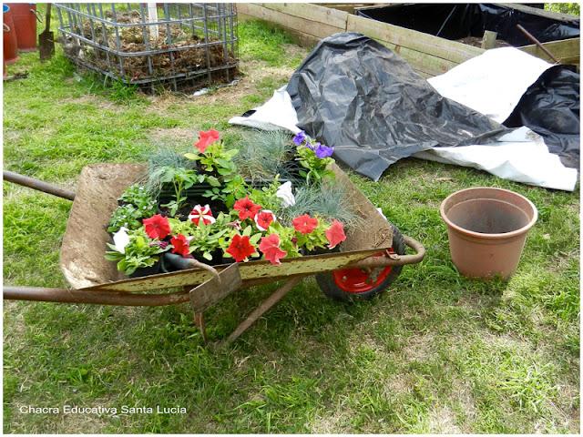 Preparando macetas con flores - Chacra Educativa Santa Lucía