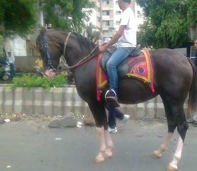 swaminarayan horse rath yatra