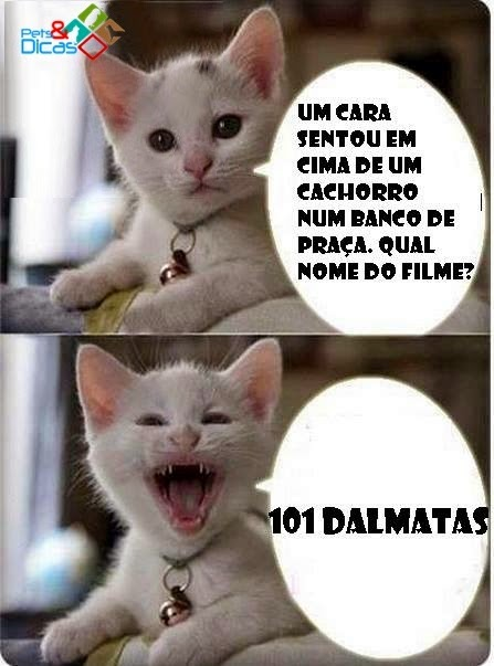 Figuras de piadas de gato para publicar Facebook