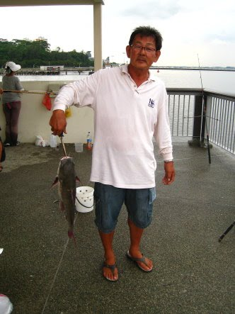 Big Catfish [Hexanematichthys], Seng Heurr 鲶鱼 [chinese] or Bulukang [malay] Caught by Ah Tan At Woodland Jetty