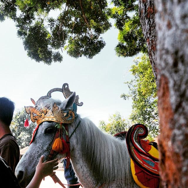 kuda renggong sumedang