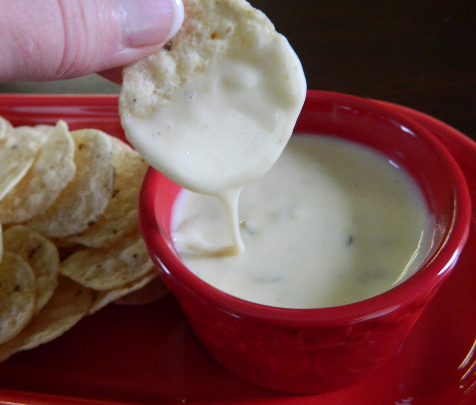 Sugar Spice and Spilled Milk: Queso Blanco Dip