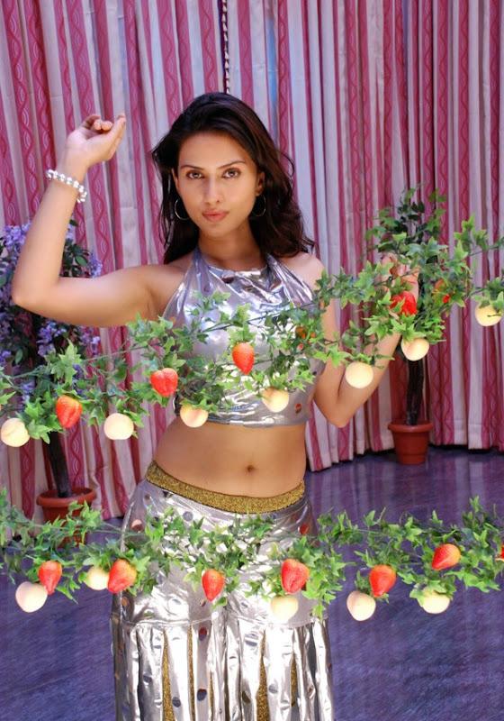 Gowri Pandit Hot Stills Gowri Pandit Hot Photos from Nithya pellikoduku wallpapers