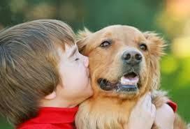 terapias con animales ayuda al autismo