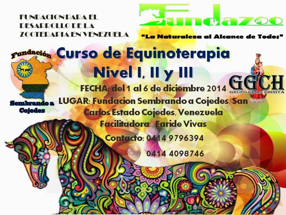 Curso de equinoterapia. Fundazoo | JINETE Y CABALLO