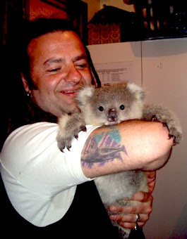Sponsor a Koala for just $40 at Southern Ash Wildlife Fund www.samthekoala.com.au
