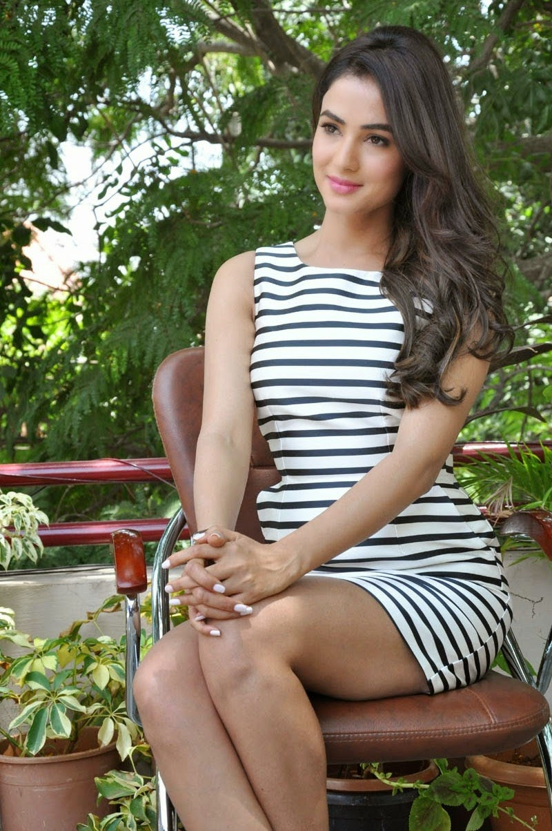 Sonal Chauhan Displays Her Long Sexy Legs At Telugu Film 'Pandaga Chesko' Press Meet In Hyderabad