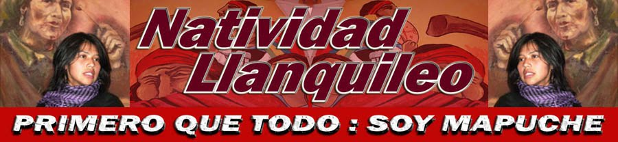 Natividad Llanquileo-Blog