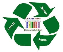 Recicla: Es tu Responsabilidad