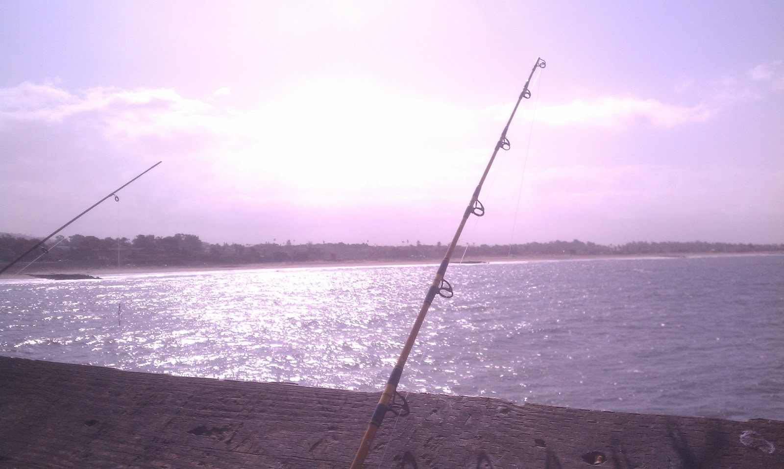 Burger 39 s fishing log crabbing and fishing ventura pier 05 for Ventura sport fishing