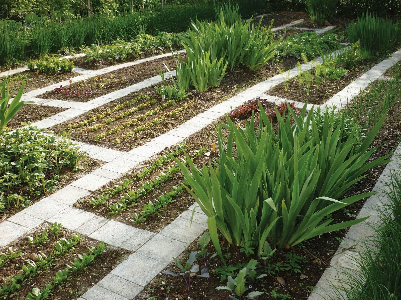 Ландшафтный дизайн огорода фото