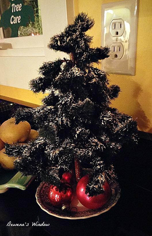 Dewena's Window: Christmas Trees and Pumpkins