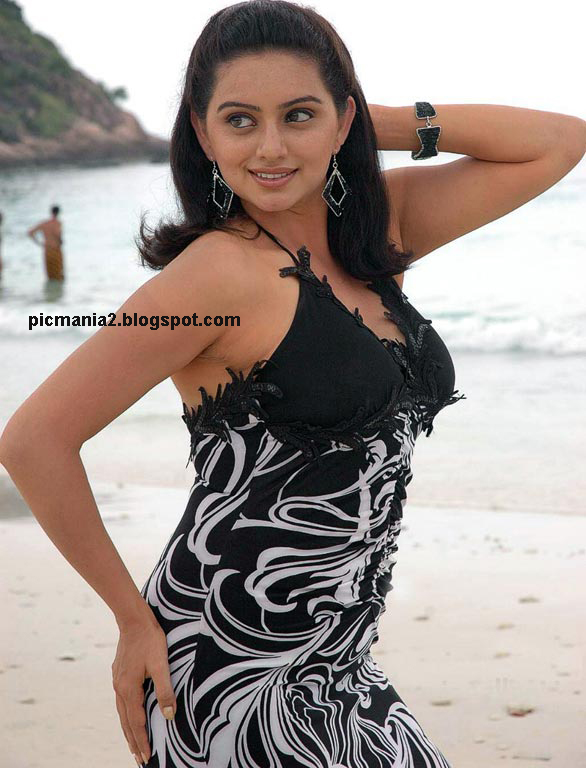 south indian sexy actress hema malini ( naan avan allai 2) hot   image gallery