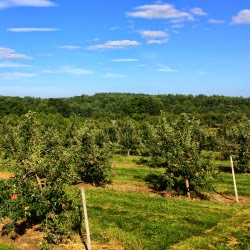 DeMeritt Hill Farm NH _ New England Fall Events_Apple Picking Orchard