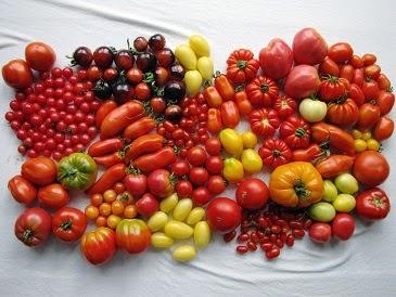 nutribalance tomaten supergezond superfood. Black Bedroom Furniture Sets. Home Design Ideas