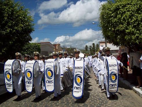 Banda Cenecista desfile 2010
