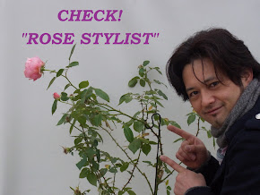 ROSE STYLIST