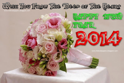 Beautful Happy New Year 2014 Wallpapers